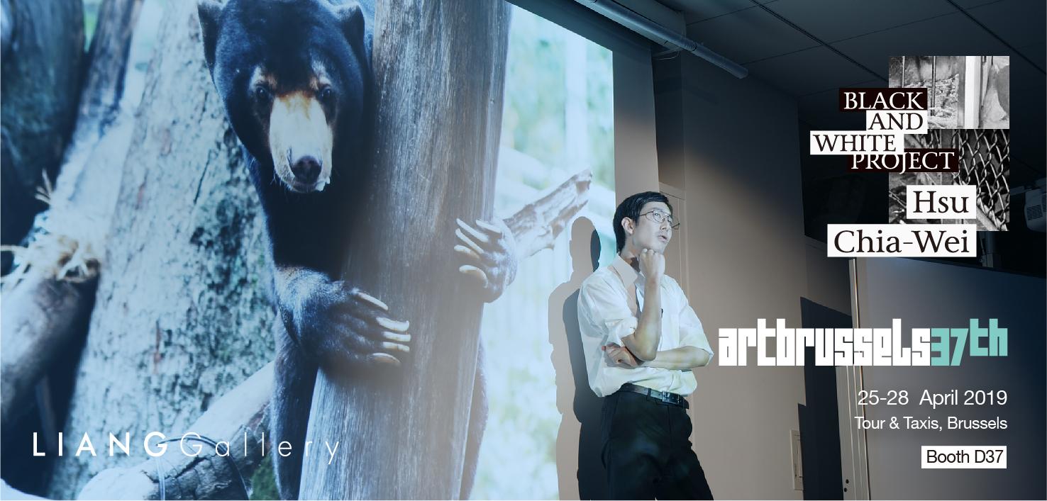 2019 布鲁塞尔艺术博览会