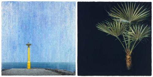 胡朝聪  成为一个地方-1 2017 压克力丶画布板  80.5x80.5cmx2