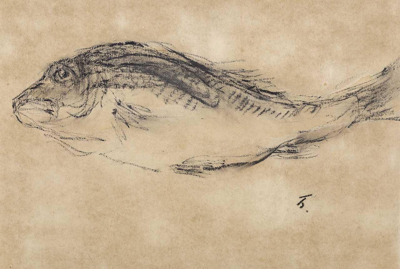 魚 Charcoal stick on paper 25x36.8