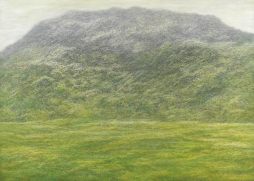 林煒翔  晃遊(十三) 2016 油彩、畫布  162x227cm