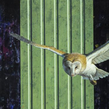棲域接境—夜巡