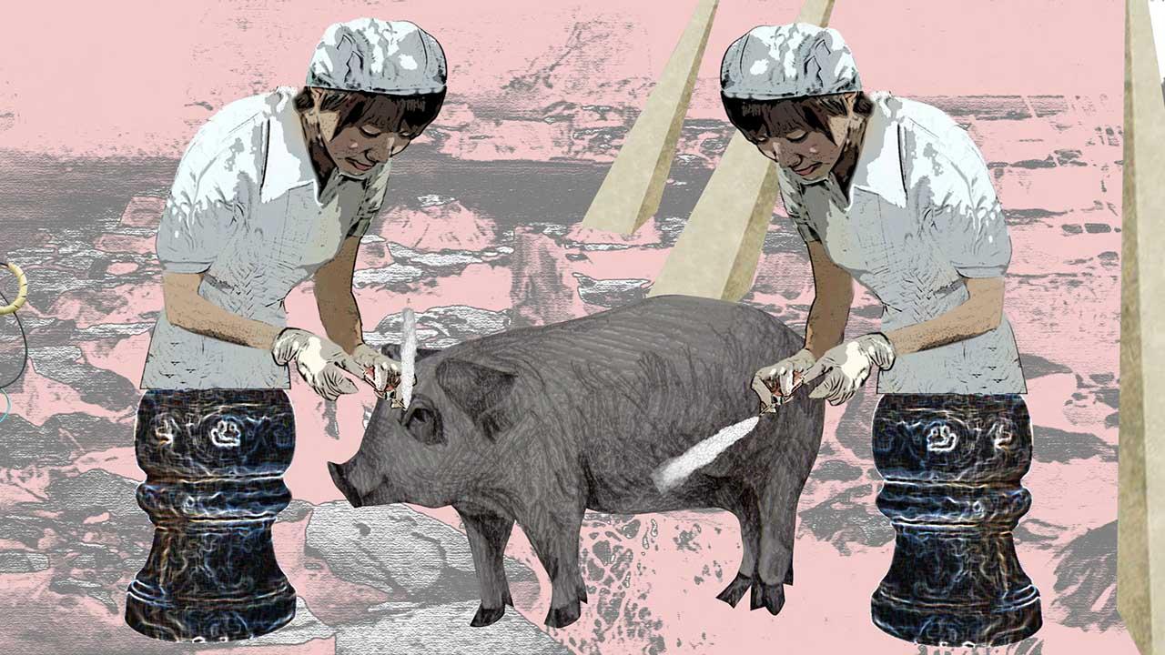 陳依純 曲水流豬 有聲彩色錄像